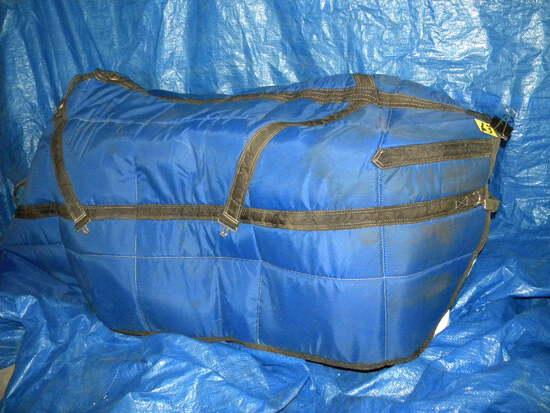 Blue Padded Horse Blanket