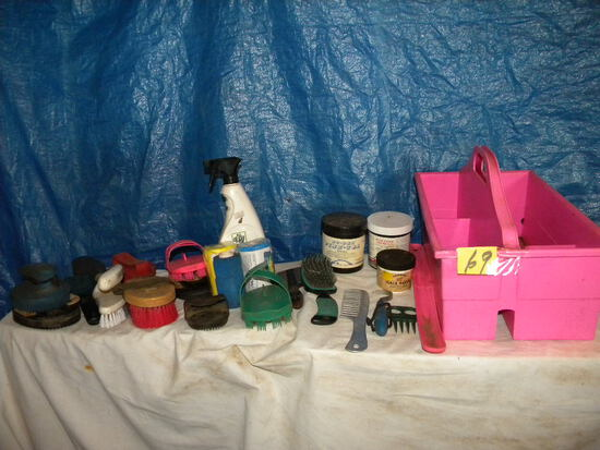 Pink Tote W/brushes, Combs, And Other Grooming Items.