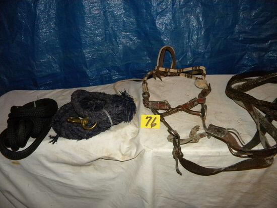Bridle W/bit, Lead Strap, 2 Lead Ropes.