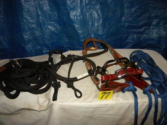 Bridle W/bit, Lead Strap, Rope Halter.