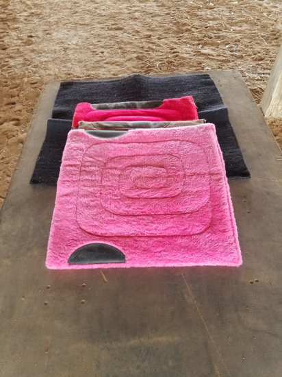 (4) Horse Saddle Pads