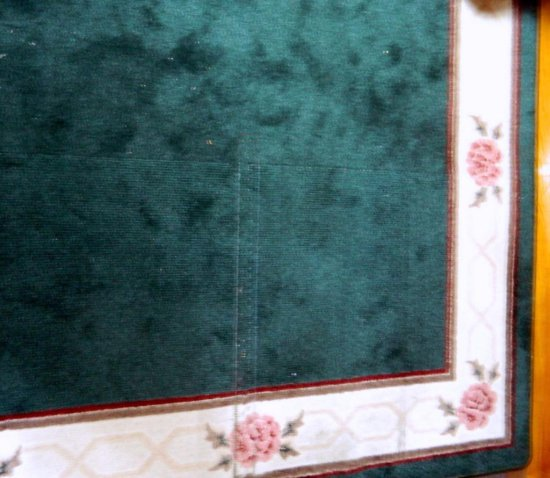 Green Area Rug with Floral Border