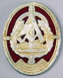 Scarce 1937 SA Gruppe Niederrhein Badge