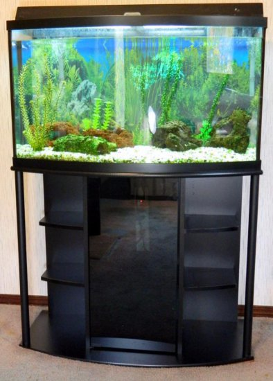 Fresh Water Aquarium with Stand, Large