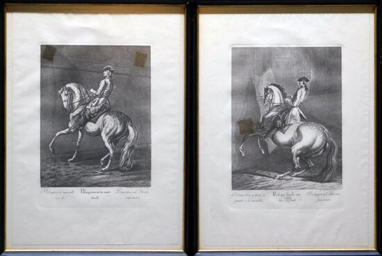 Grouping of Two Johann Elias Ridinger Military Horse Prints