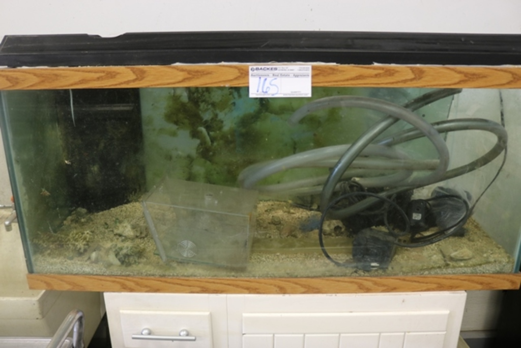 Lot: 65 Gallon Aquarium | Proxibid Auctions