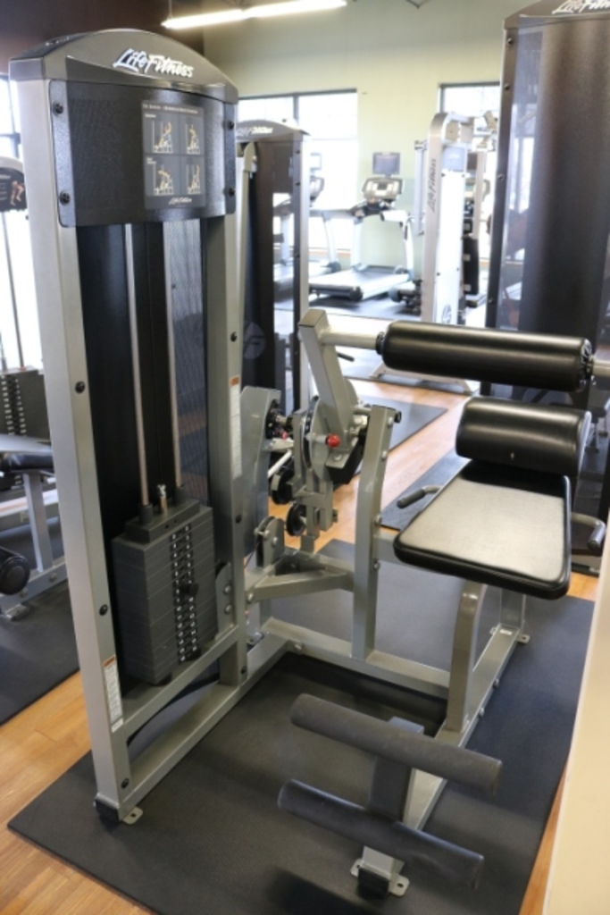 Lot: Life Fitness FT Series Abdominal/Back Extension
