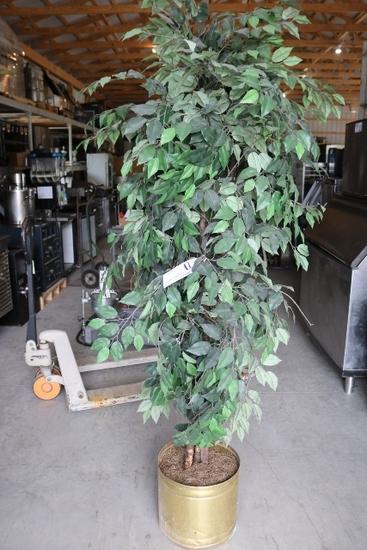 Plastic Fig Tree