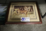 Ruane Mannun Deer picture 16 x 20