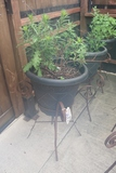 Times 3 - Metal plant stands with flower pot