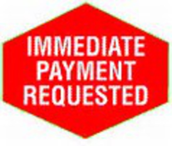 Immediate payment - within 24 hours of end of auction if your credit card i