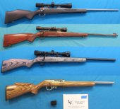 Spring Gun/Sportsman Auction