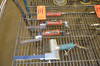 Lot - (4) Assorted Pneumatic Ribbon Sanders, to Include: (1) 3/4 in. wide,