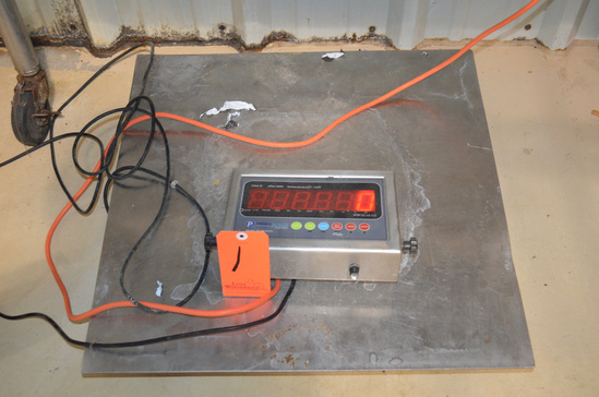 24 in S/S Platform Scale with Readout