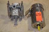 Lot - 2 HP S/S Motor and Wilden Model Pump1, S/S Diaphragm Pump, S/N: 01-5000-03