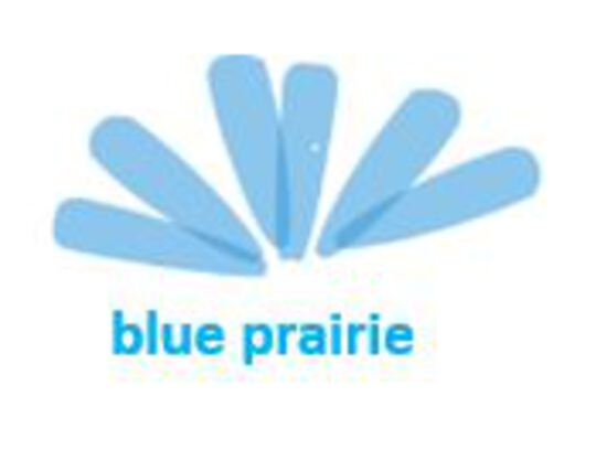 Blue Prairie Brands