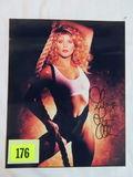 Ginger Lynn/Adult Star Signed Photo