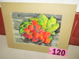 Red Radishes watercolor, matted,  18in x 14in,   artist signed Isabel Culbe