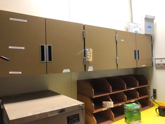 Wall cabinet 82in x 18in