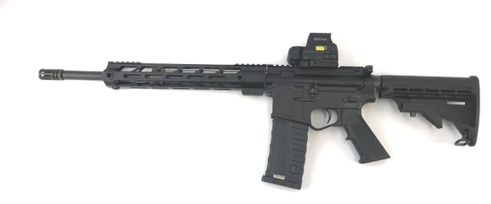 E3 ARMS OMEGA-15 AR15 w/L3 EOTECH HALOGRAM SIGHT
