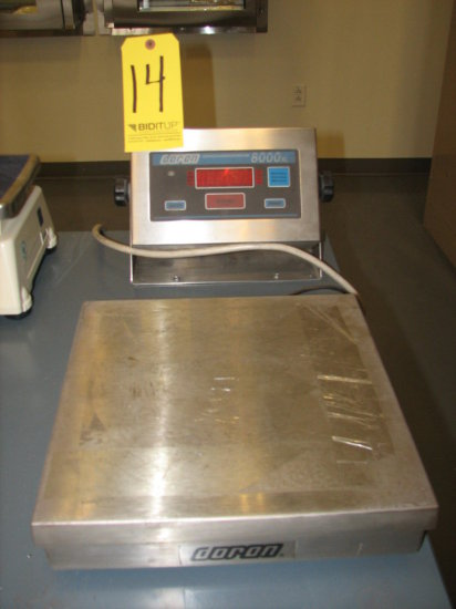 Doran 8000XL Scale