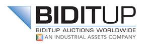 BIDITUP Auctions Worldwide