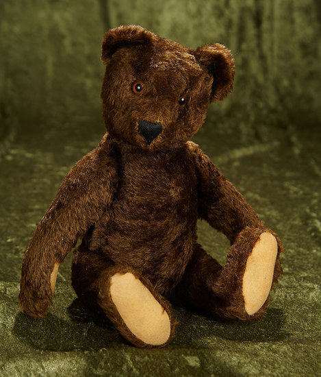 """13"""" German mohair teddy attributed to Steiff in unique dark brown color. $400/600"""