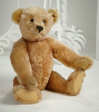 Very Rare German Apricot Mohair Teddy by Steiff with Blank Button in Ear 1800/2400