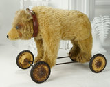 Early German Mohair Teddy on Wheels with