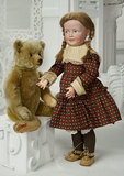 German Brown Mohair Teddy by Steiff with Button in Ear 400/600