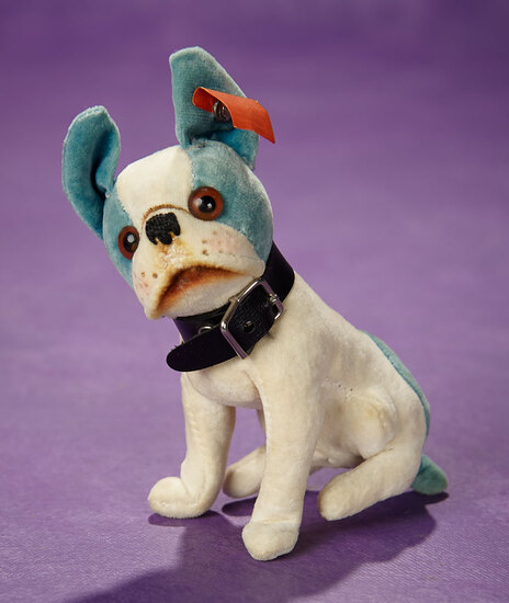 "Rare German Blue and Cream Velvet ""Bully"" by Steiff with Red Cloth Label 1100/1400"
