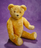 German Golden Mohair Teddy by Petz with Milk Glass Button on Chest 300/500