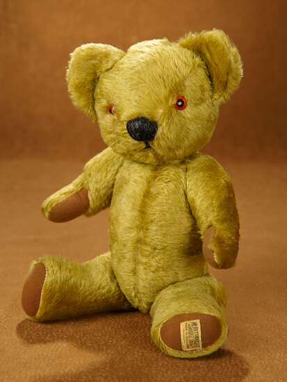 English Mohair Teddy by Merrythought with Endearing Expression 300/400