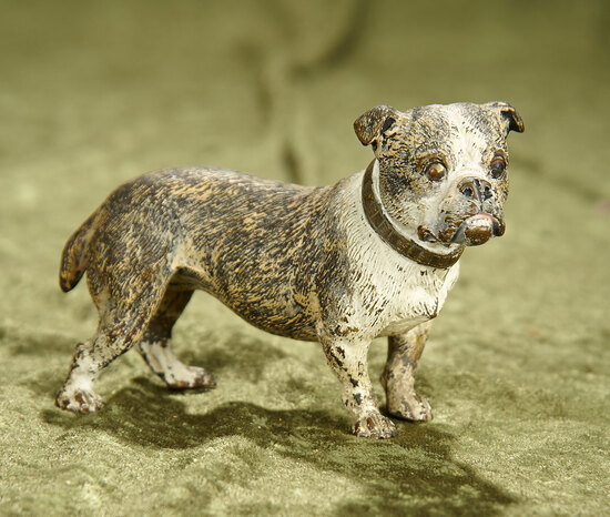 "3"" Antique Vienna bronze bulldog with great detailing and cold painted."