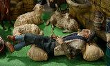 Rare Neapolitan Shepherd Posed for a Nap 1200/1500