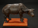 Neapolitan Oxen with Grand Sculpted Horns 1100/1300