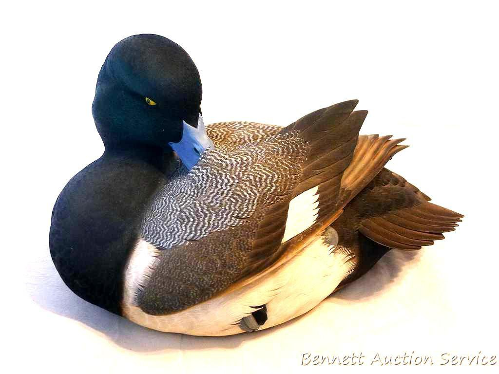 Ducks Unlimited Special Edition 2007-2008 by Jett Brunet, Greater Scuap Drake. Amazing detail and