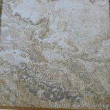 Greenworks porcelain tile, coral reef, 12