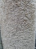 Carpet remnant, 12' x 20' 6
