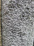 Carpet remnant, 12' x 8' 6