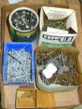 Assortment of nails and screws.