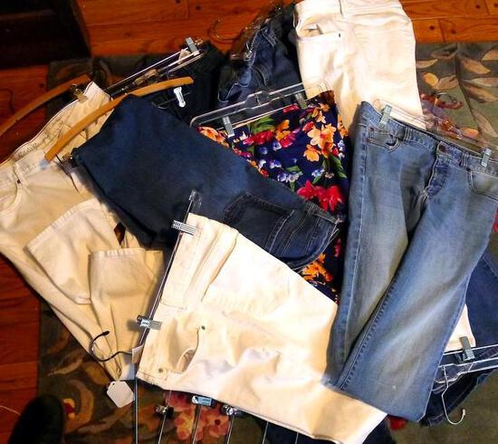 Ladies pants mostly size 12, some size 10. Some blue jeans, some dress pants. Brands include Eddie
