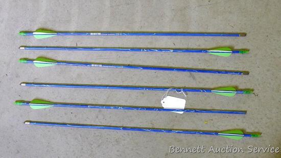 "Six carbon express Thunder Express fiberglass arrows 27"" long. Five have field tips."