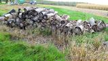 Pile of cut and uncut firewood up to 18