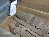 files & antique tools