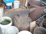 165 lb anvil