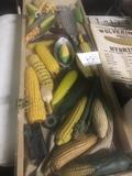 Display Case & Corn Items