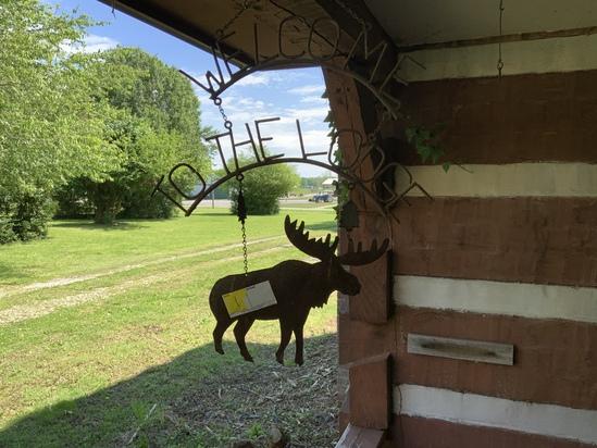 Hanging Moose Art