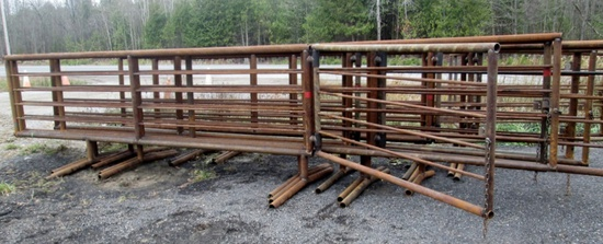 Heavy Duty 24' Western Style Panel with Gate - New!