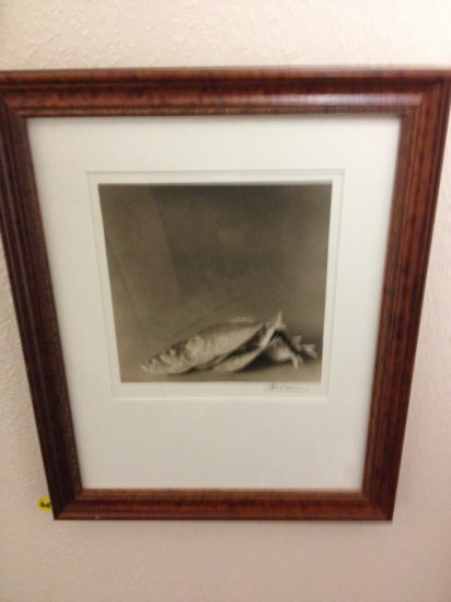 ART - FISH - TONED SILVER GELATIN PRINT - SIGNED A.K. VENINA (LOWER RIGHT - INK) - SIZE 7.5''x8'' -